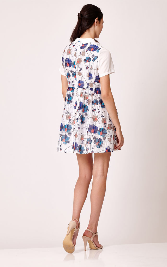 Floral Chiffon Dress with Multicoloured Poppy Print by Cutie London