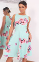 Elisha Mint Floral Sleeveless Skater Dress by Missfiga