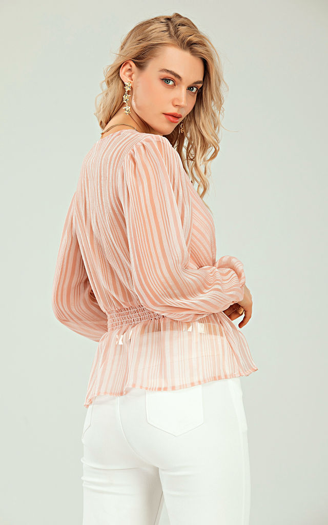 Long Sleeve V Neck Sheer Top In Pink by FS Collection