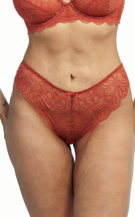Wolf & Whistle Ariana Everyday Lace Brief Intense Rust by Wolf & Whistle