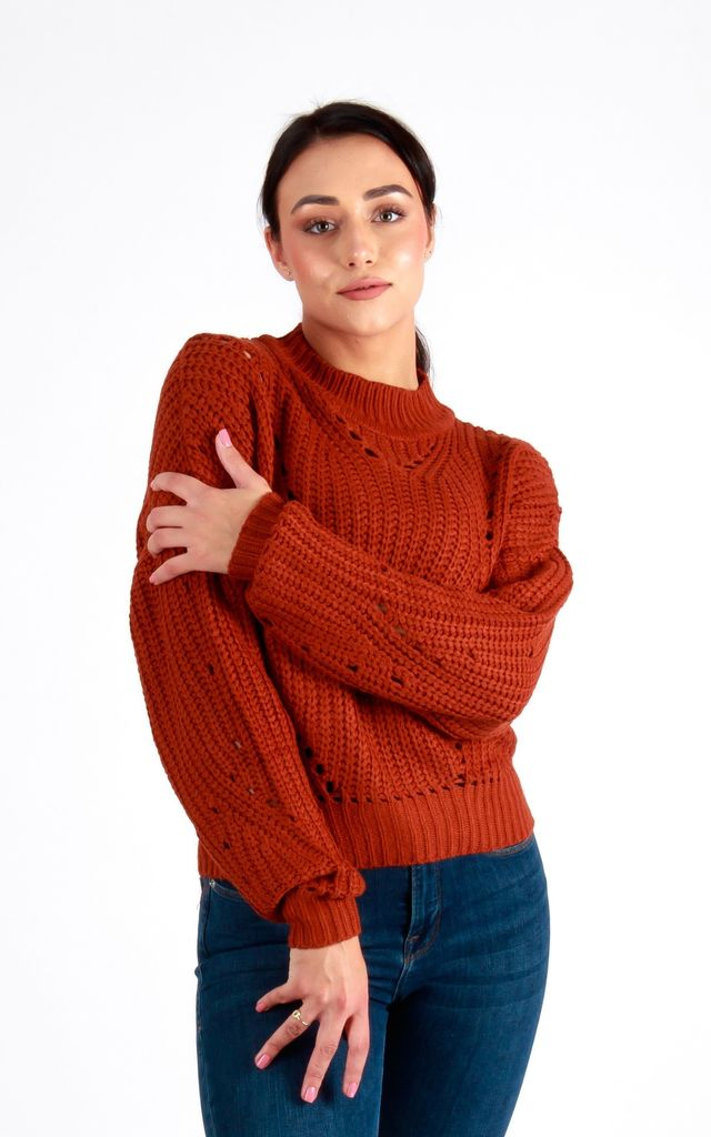 Mia High Neck Jumper in Rust by Damn Good Thing